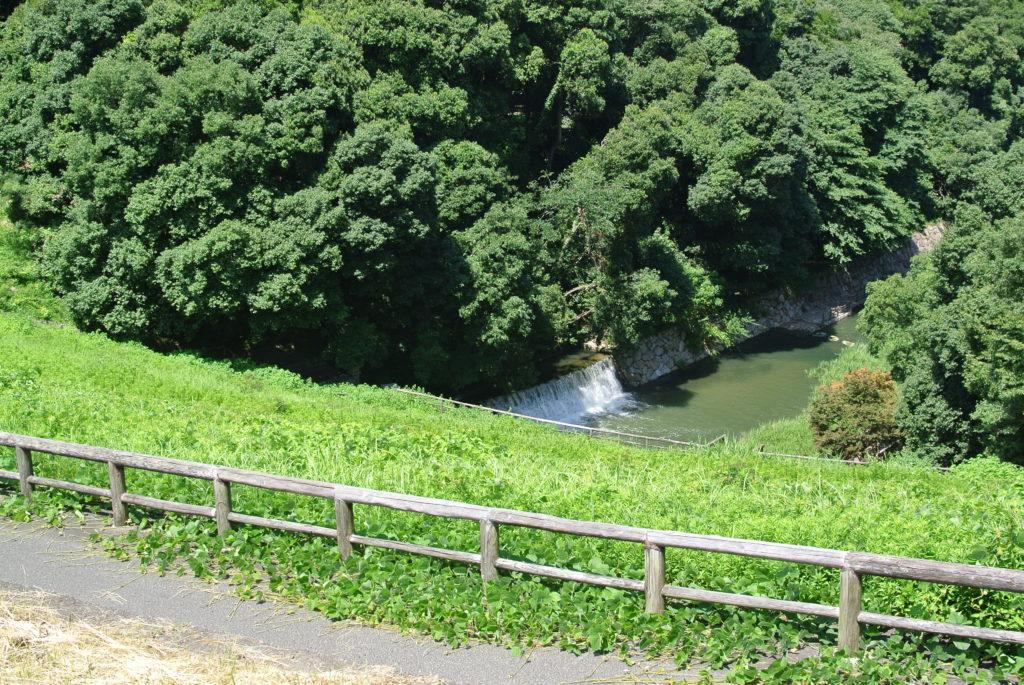 満濃池の用水
